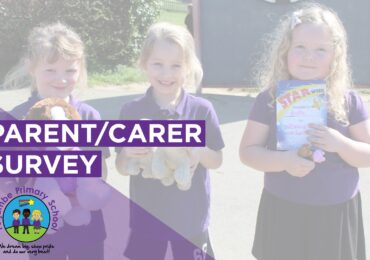 Parent/Carer Survey - Review of Online Learning